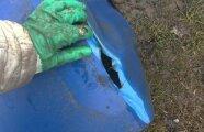 Лайфхак: Что нужно сделать с садовой бочкой с водой, чтобы она не лопнула в мороз