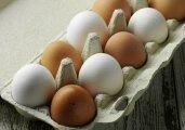Лайфхак: Какие яйца выбрать для новогодних салатов: белые или коричневые