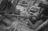 Гаджеты: Как советская винтовка СВТ наводила шорох на восточном фронте