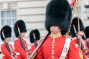 Общество: Зачем носить высокую шапку и как падать в обморок по уставу: 7 фактов о британской королевской гвардии