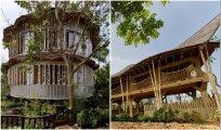 Архитектура: Усадьба из бамбука и пластика обошлась в 2 раза дешевле, чем из традиционных материалов