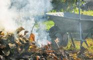Гаджеты: Как без штрафов сжигать мусор на даче, если нужно держать 25 метров от постройки