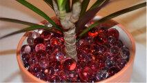 Лайфхак: 4 способа спасти комнатные растения от обезвоживания в период мощного отопления