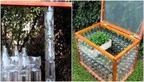 Лайфхак: Мини-парник для рассады из пластиковых бутылок: дешево, быстро и надежно