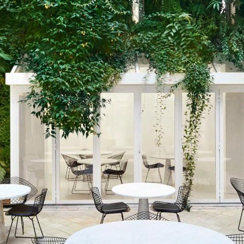 Alaïa открыли новый ресторан в Париже